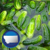 montana cucumber pickles processed in brine