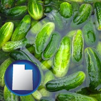 utah cucumber pickles processed in brine