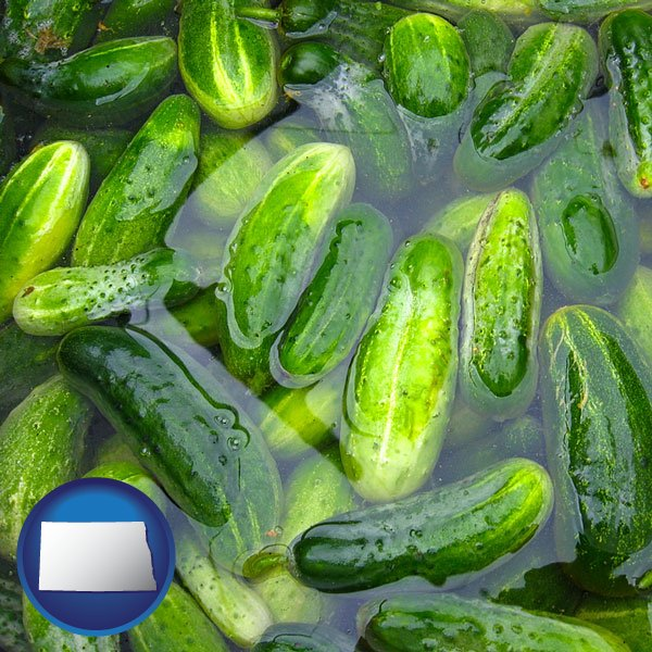 Food processing in north dakota cucumber pickles processed in brine with north dakota icon freerunsca Image collections